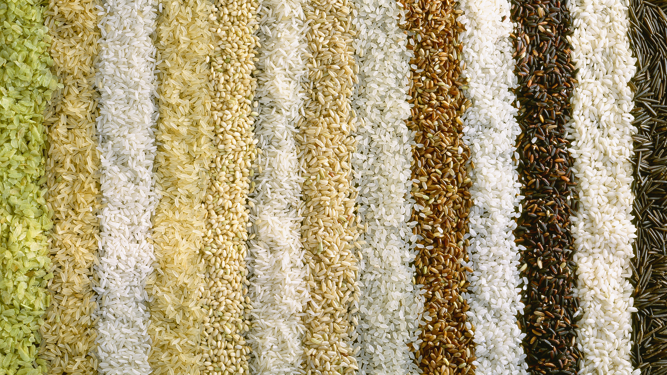 Scientists find that rice grown under elevated carbonconditions loses substantial amounts of protein, zinc, iron and B vitamins, depending on the variety. (Maximilian Stock, Ltd./Getty Images/Passage)