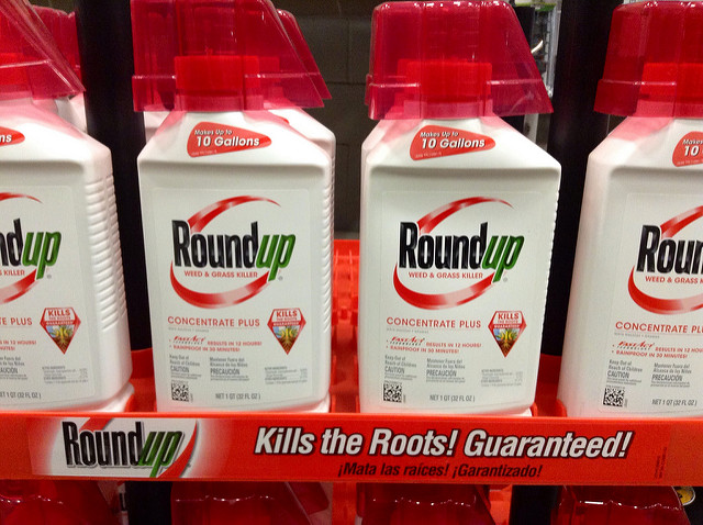 Glyphosate, and its use in Monsanto weed killer Roundup, is the chemical at the heart of years of global controversy, as well as a recent $289 million victory against the company by a groundskeeper dying of cancer (Mike Mozart)
