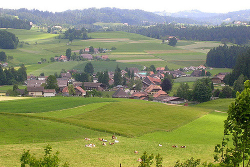 Thousands of Swiss family farms have been forced to close in recent years, according to the Swiss Alpine Farming Association.