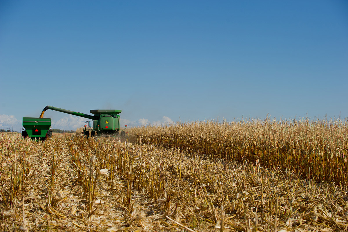 Agribusiness influence on research has grown slowly over the last 30 years after the the Bayh-Dole Act incentivized private funding at public universities (photo credit: United Soybean Board)