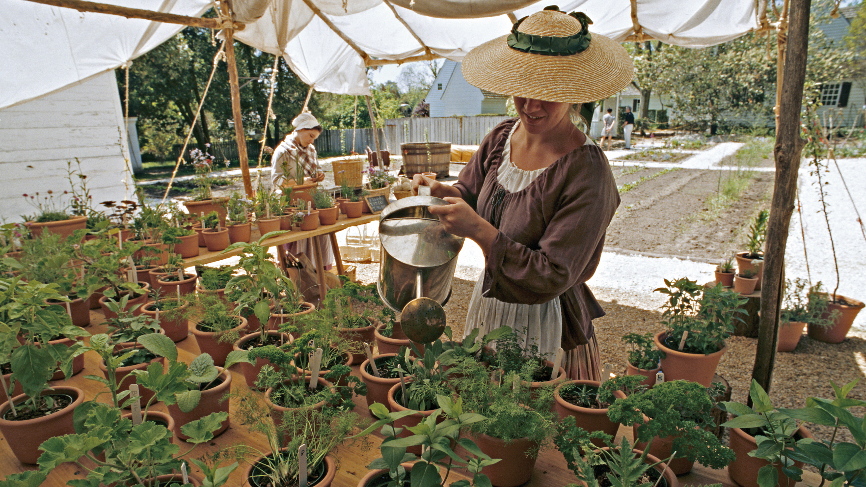 At Colonial Williamsburg's garden and nursery, which is open to guests, staff grow items that would have been found in gentry pleasure gardens: herbs, flowers and seasonal greens. (Colonial Williamsburg Foundation)
