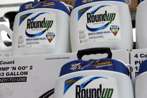 A federal jury in San Francisco found that Roundup likely caused California resident Edwin Hardeman to develop non-Hodgkin's lymphoma (ELI CHEN | ST. LOUIS PUBLIC RADIO).