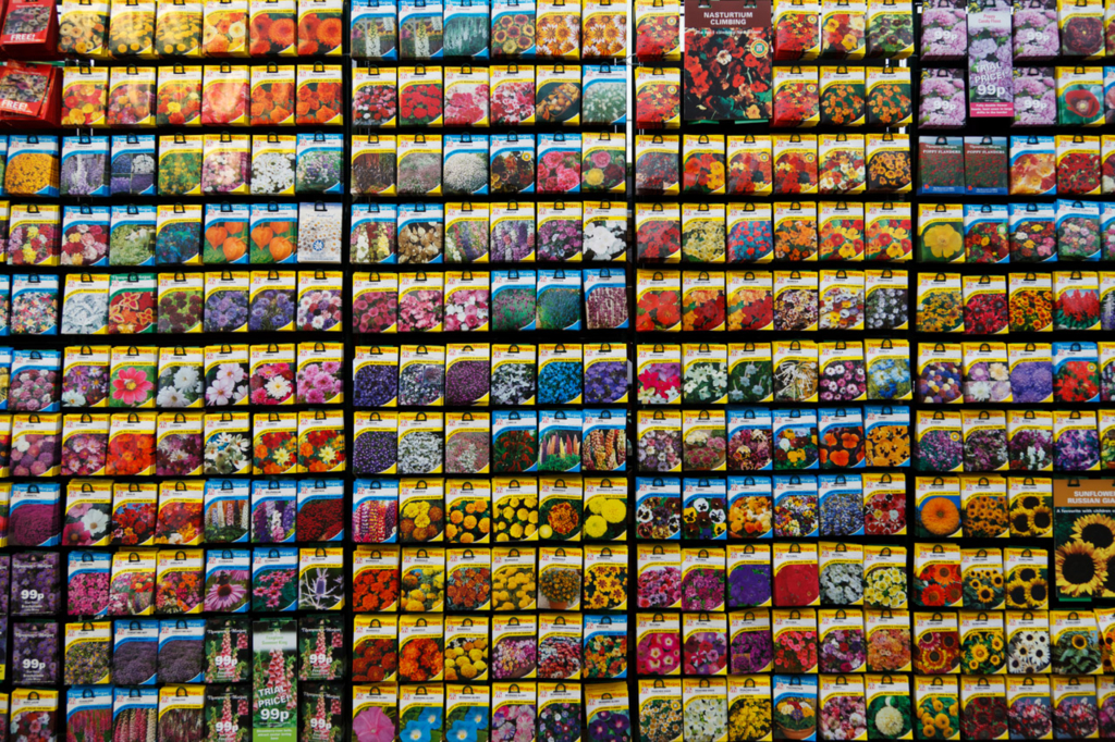 So many seed packets to choose from! (Petr Kratochvil/publicdomainpictures.net)