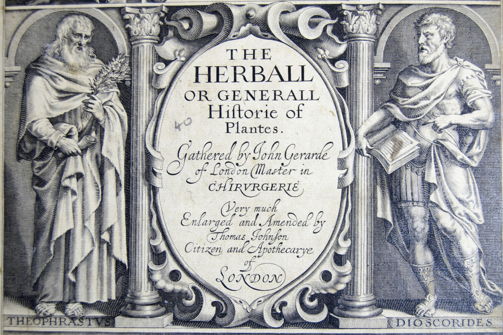 John Gerard, Herball (Medical Archive collections at University of Liverpool/flickr).