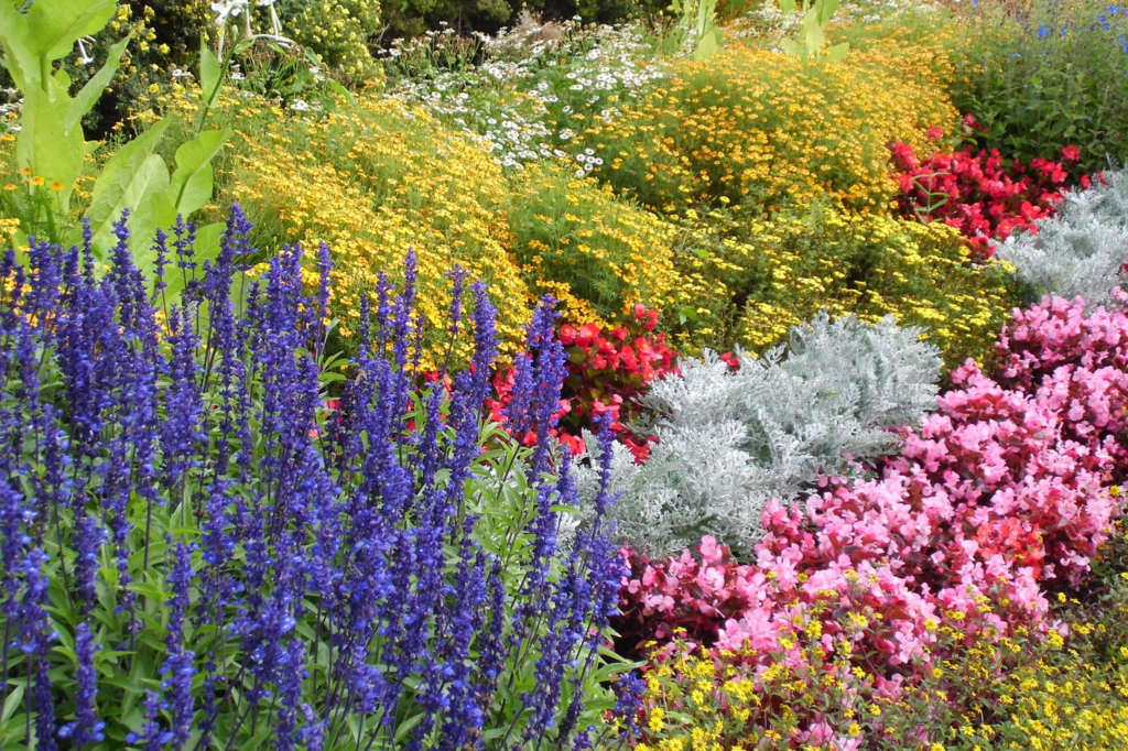 When planning a flower bed, keep color and texture in mind and use repetition to promote unity (SteffaniLehmann, Pixabay).