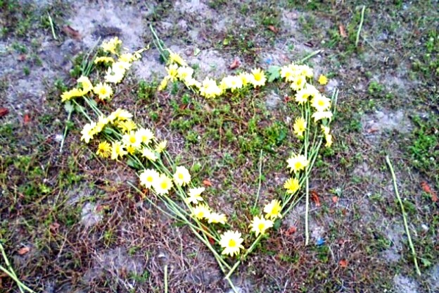Flower heart, broken.