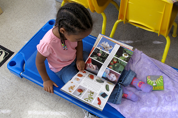 A student at Busy Bees Academy in Columbus reads a book.