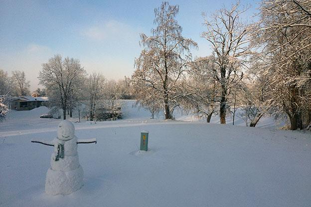 snowman in Bloomington