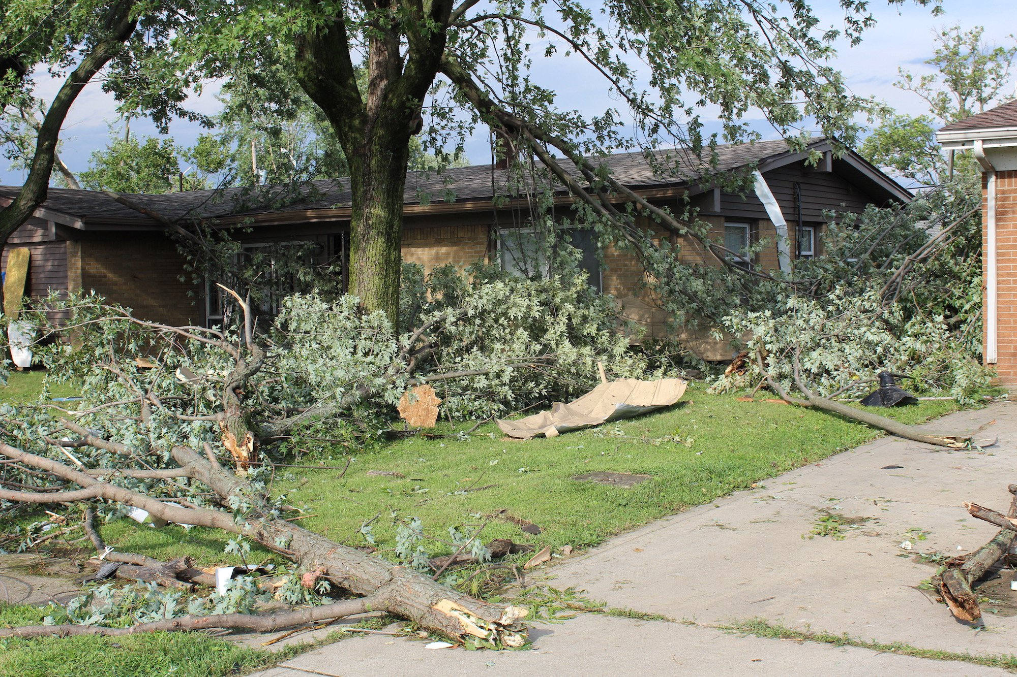 A tornado touched down near Imperial Drive in Kokomo, causing damage to trees and property nearby.