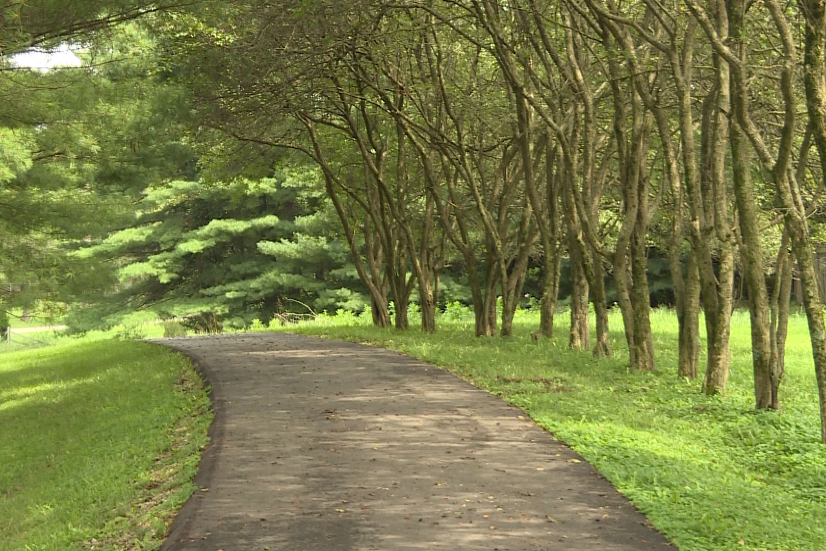 Winslow Trail
