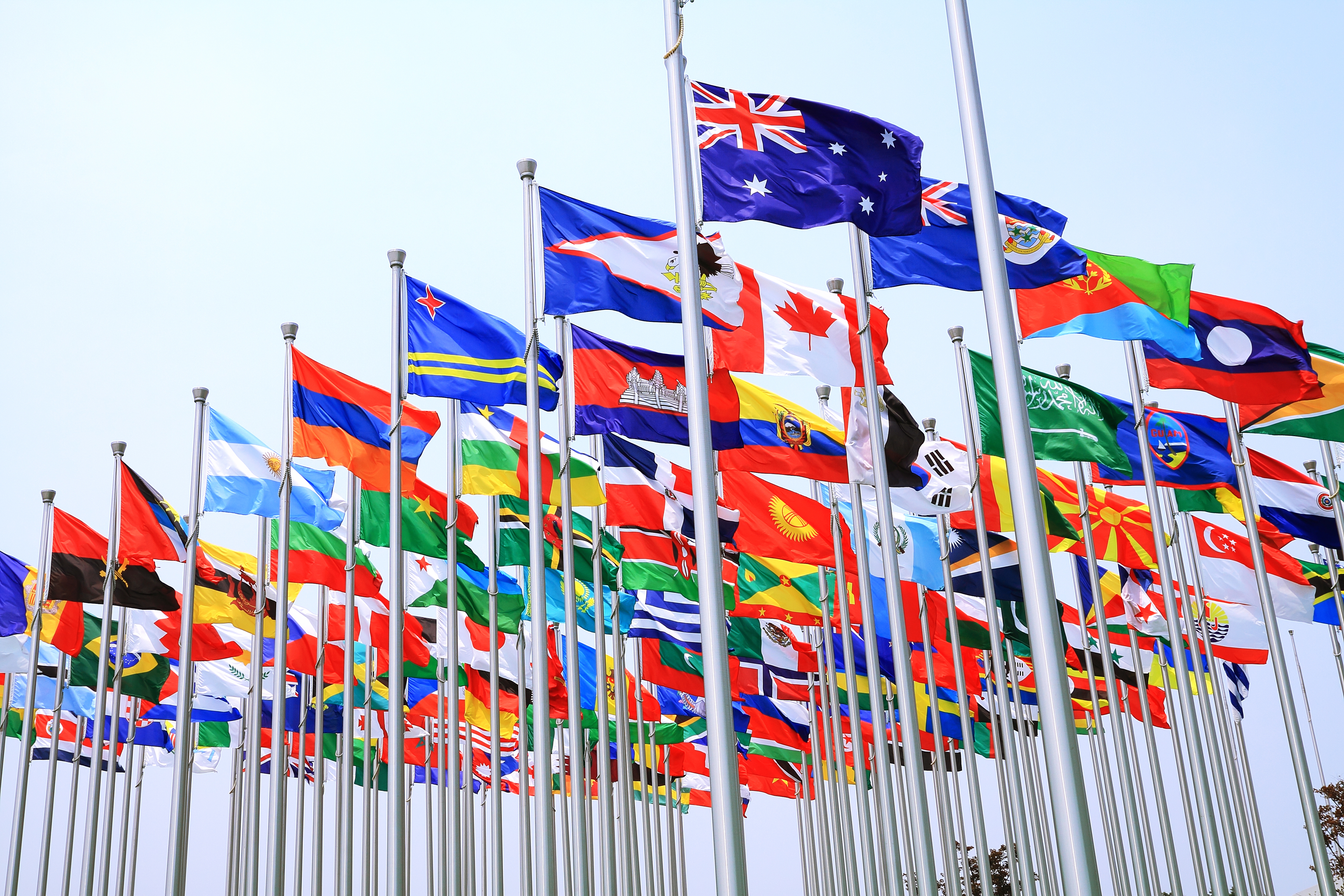 Flags outside the United Nations headquarters in New York City.