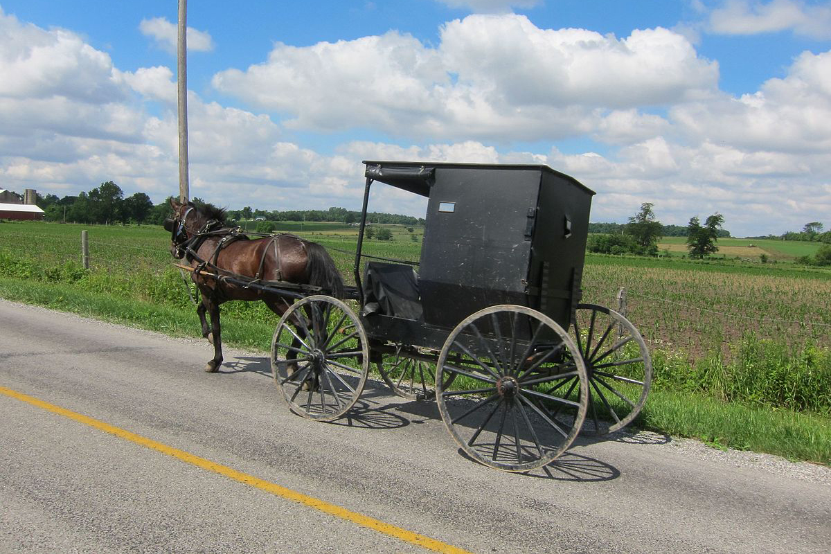 Orange County is home to about 300 Amish families who use horses and buggies to get around.