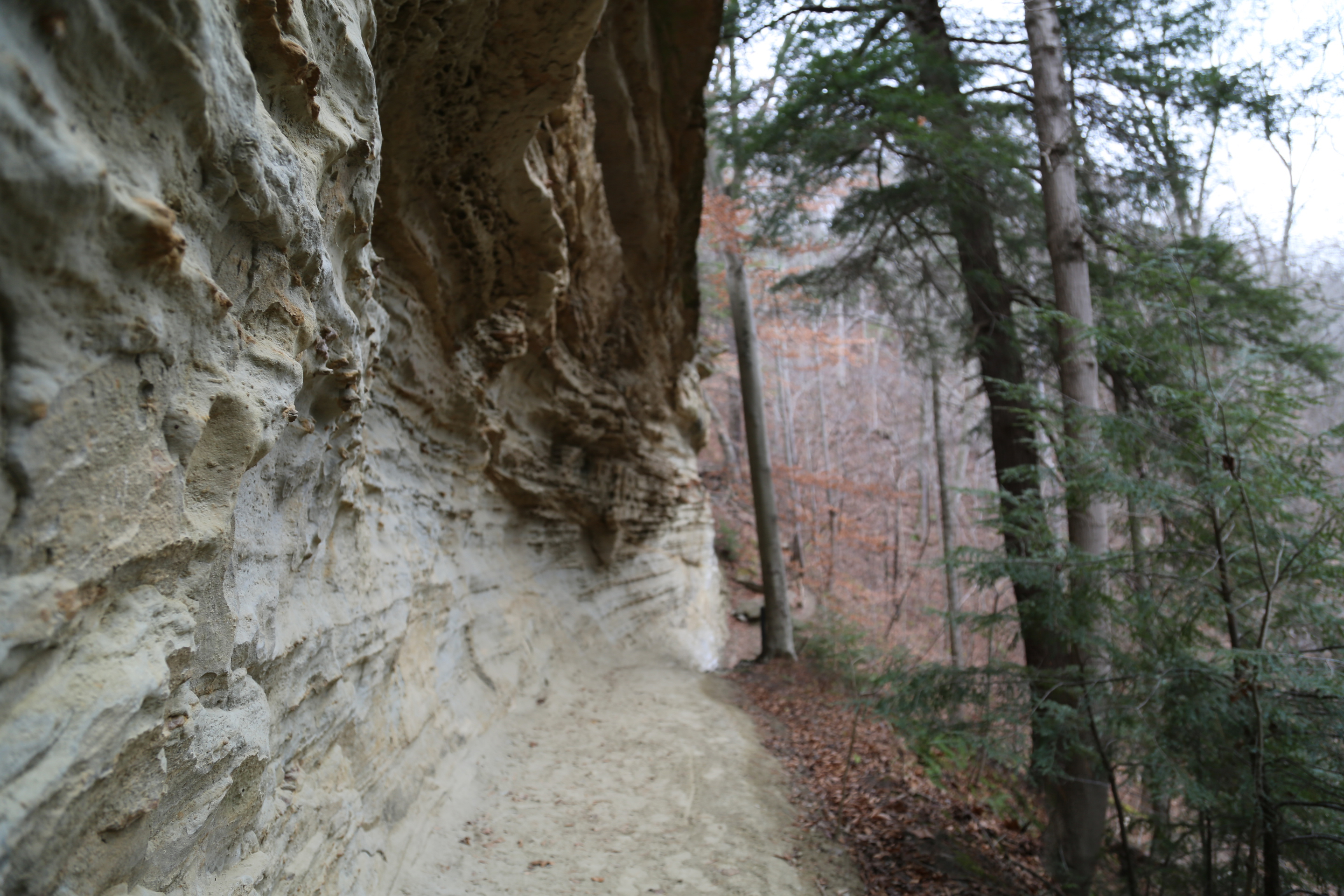 Shades State Park in western Indiana.