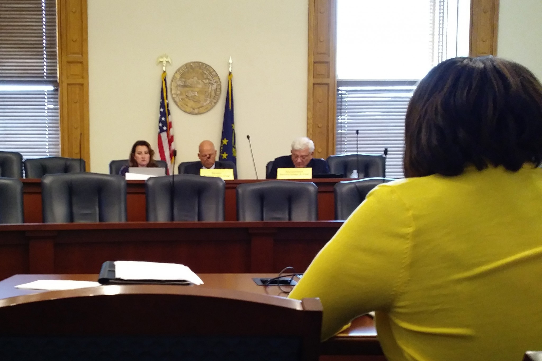 Rep. Robin Shackleford presents her proposal for traffic amnesty program to study committee on roads and transportation.