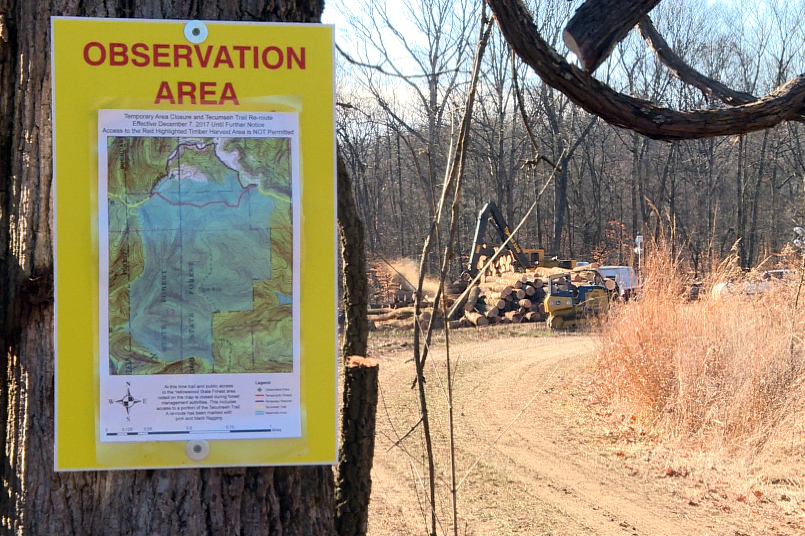 A sign designating the observation area in Yellowwood State Forest.