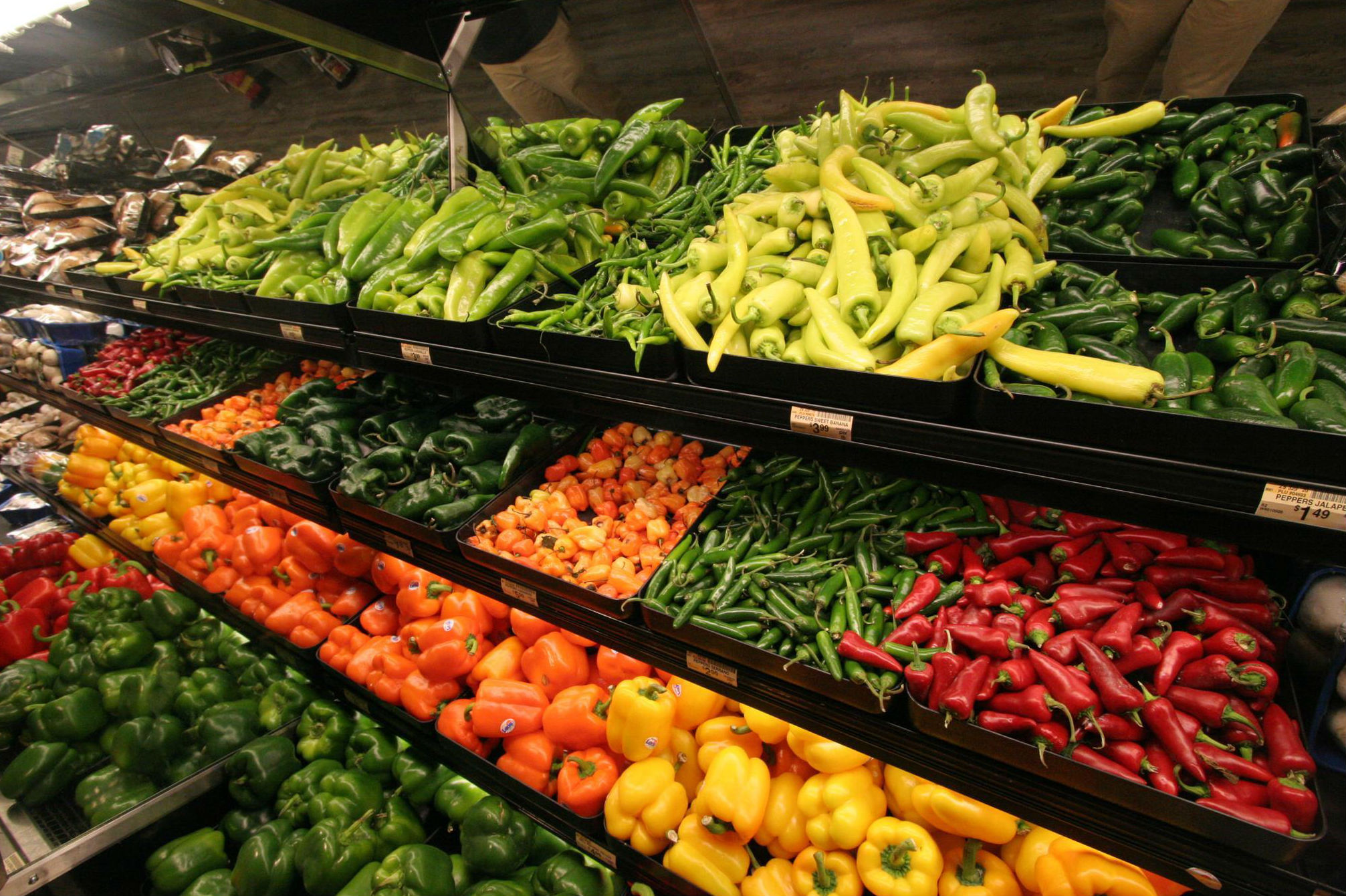Fruit and vegetables are carriers of foodborne illness